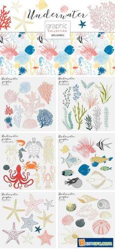 Underwater Graphic Collection 2269928