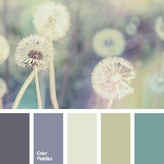 Color Palette No. 1436