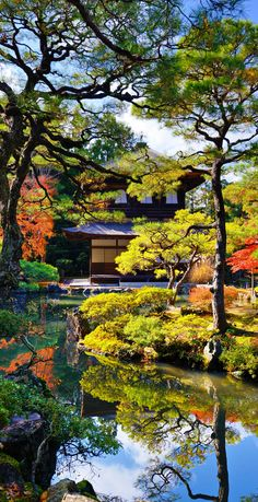 Beautiful Colors of Ginkaku-ji Temple in Kyoto, Japan during the fall season