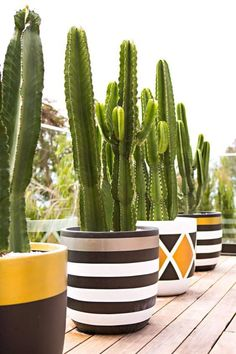 Fibreclay Pots By Australian-Based Design Twins.