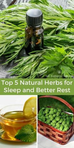 Natural herbs for sleep and better rest