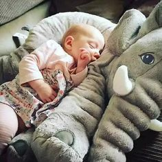Best Stuffed Animals For Your Child
