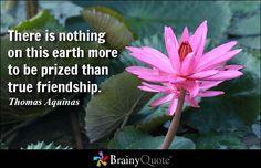 Thomas Aquinas Quotes - BrainyQuote