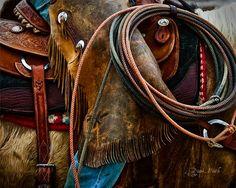 Western Photograph  Fine Art Photo Home Decor  by PawsFurAMoment,