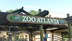 Zoo Atlanta – Atlanta, GA -- aquarium atlanta georgia -  I'd love to share #Atlanta with you! I'm a top 50 finalist to win a trip around the world! Please vote once a day for me to be @Jauntaroo's Chief World Explorer at http://www.bestjobaroundtheworld.com/submissions/view/1280