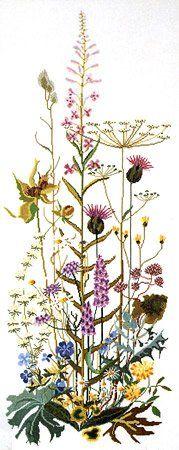 Wild Flower Profusion Cross Stitch Kit | sewandso