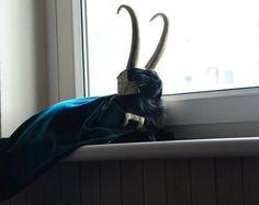 I'm Lokitty of Catgard, and I am burdened with glorious purrrpose // Jajajajaja