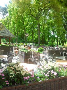 Ons terras, aan de rand van het natuurgebied 't Lutterzand, aan de oever van riviertje de Dinkel, heerlijk in het zonnetje, wijntje erbij.... Genieten.