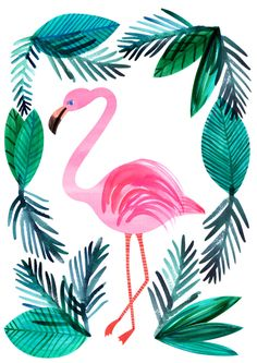 Pink Flamingo with Tropical Leaves Frame Watercolor Art Acuarela. - Pink Flamingo with Tropical Leaves Frame Watercolor Art Acuarela. Flamingo Party, Flamingo T Shirt, Flamingo Print, Pink Flamingos, Deco Surf, Atelier D Art, Whatsapp Wallpaper, Paint By Number, Chinoiserie
