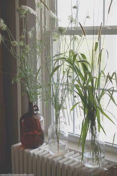 Botanische woontrend