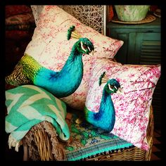 Exotic cushions galore