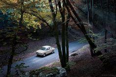 BMW 1602 - Woods by Amaury AML,