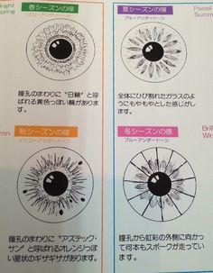눈동자 모양으로 보는 퍼스널컬러 (재미로 보세요) | 인스티즈