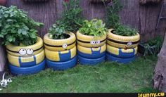 Minions: Recycle Scrap Tires