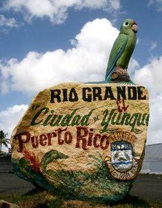 Esta roca la vera ruta a Rio Grande,hermoso pueblo,hermosos rios,la fiestas patronales de es pueblo son lo mejor.