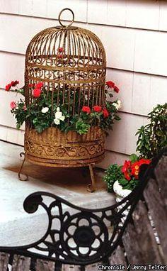 Birdcage as a Planter