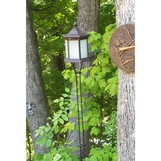 Solar Lantern Tiki Torch with Frosted Glass, Set of Two