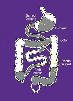 Natural colon cleansing was also employed by the Ancient Greeks as part of their natural health regimen and their tradition. In the United States, colon Herbal Colon Cleanse, Colon Detox, Colon Health, Lentil Nutrition Facts, Health And Nutrition, Health Tips, Health Benefits, Gastro, Natural Remedies