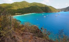 Guana Island in the British Virgin Islands. (From: 40 Islands You'd Love To Be Stranded On)