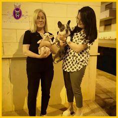 • In diretta da Foggia, la nostra fantastica Total Cream  Molly abbraccia la sua nuova bellissima famiglia,che con grande piacere ci sceglie per la seconda volta ❤️❣️ È sempre un onore essere scelti per la seconda volta ❤️❣️ Buona Vita Amore 💓❣️ • • 💫🌟I Cuccioli Di Carlotta semplicemente i più ambiti,ricercati e inestimabili cuccioli d'Europa 🇪🇺🌟💫 • • •  #Bulldogfrancese #bulldogfranceseitalia #frenchbulldog #frenchbulldogs #frenchbulldogpuppy #frenchbulldoglife #frenchbulldogworld… Grande, Couple Photos, Couples, Instagram, Europe, Couple Shots, Couple Photography, Couple, Couple Pictures