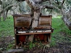 USSR abandoned places in decay - A tree growing through an abandoned piano. This is sad. Whi would abandon such a beautiful piano.n now look how the poor tree has to grow! Abandoned Mansions, Abandoned Buildings, Abandoned Places, Haunted Places, Derelict Places, Spooky Places, Haunted Houses, Top Photos, Photos Du