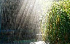 ... @ivannairem .. https://tr.pinterest.com/ivannairem/rain-rain-rain/