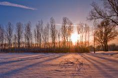 Lange dramatische schaduwen In de winter staat de zon laag aan de horizon. Je kunt bijna de hele dag fotograferen met goed licht (er vanuit gaande dat het goede dag is). De lage hoek die de zon met het landschap maakt, zorgt voor lange dramatische schaduwen. Ze zorgen voor mooie lijnen in je foto. Gebruik deze lijnen om minder interessante delen van je foto in te vullen of gebruik ze als invoerende lijnen in je compositie. Dit zorgt voor meer dynamiek in je compositie.
