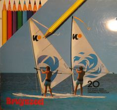 Bruynzeel 20 2 windsurfers