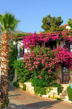 A house in Antalya