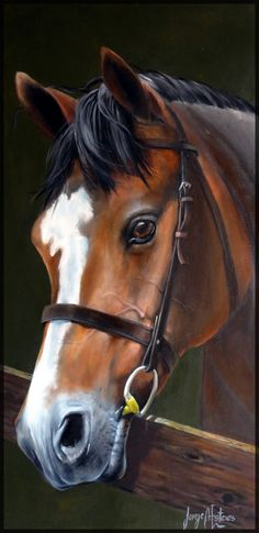 Verwandte Bild - Cavalos - Fotos e Desenhos - Kunst Pretty Horses, Beautiful Horses, Animals Beautiful, Horse Drawings, Animal Drawings, Graffiti Kunst, Horse Sketch, Scratchboard Art, Horse Portrait