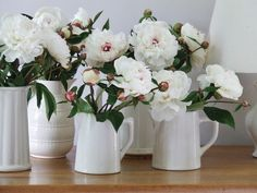 peonies My French Country Home, French Living - Sharon Santoni