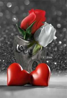 Wallpaper… By Artist SBudak… Heart Wallpaper, Love Wallpaper, Romantic Pictures, Love Pictures, Hearts And Roses, Red Roses, White Roses, Heart Art, Love Heart