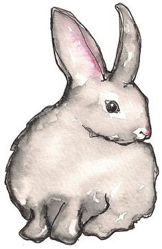 How to draw a watercolor rabbit