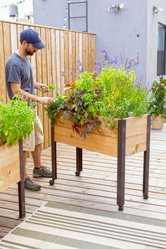 """Standing Garden  Product Details      Cedar with powder-coated aluminum legs     39-1/2"""" L x 16-1/2"""" W x 32"""" H overall     10-1/2"""" deep planting area     Holds 100 quarts of container mix     4-gallon water reservoir     Casters are sold separately     Easy assembly     Gardener's Supply Exclusive"""