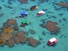 Snorkeling Maracajaú and Punaú - Natal Tourist Guide