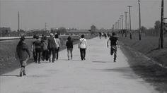 Tracking Birkenau