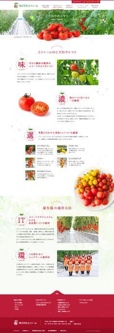 だわりのトマト|甘みと酸味が絶妙なトマト Jファームオンラインストア