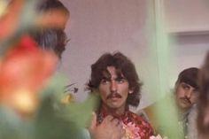 George Harrison and Richard Starkey George Harrison, Bug Boy, Richard Starkey, Beatles Photos, This Is Your Life, The Fab Four, Ringo Starr, Eric Clapton, Paul Mccartney