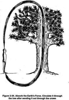 f. Absorb Earth Energy // Circulate it through the tree after sending it out through the crown.