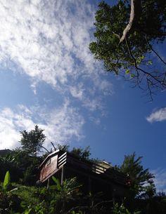Le Nid d'Amour posé sur un écrin de verdure #martinique #locationdevacances #nature #Caraibes à Les Anses d'Arlet