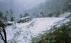 ¿Nieve en Honduras? - Diario La Tribuna Honduras