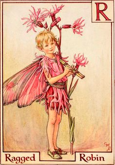 The Ragged Robin Fairy - Flower Fairies Cicely Mary Barker, Traditional Japanese Tattoos, Fairy Pictures, Butterfly Fairy, Vintage Fairies, Beautiful Fairies, Lowbrow Art, Flower Fairies, Fairy Art
