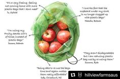 @hillviewfarmsaus  @fruitysacks are back at our market stalls at the @organicfoodmarkets this week in Hornsby Leichhardt and Marrickville. Designed by local mum Leandra they are a great alternative to plastic fruit & vegetable bags.  Pick up a set of 3 for just $9.50. We know you'll love them just as much as we do! #sustainablefarming #smallbusiness #reuseable