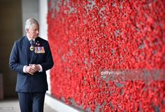 Prince Charles, Prince of Wales walks along the Roll of Honour at the Australian War Memorial on November 11, 2015 in Canberra, Australia. The Royal couple are on a 12-day tour visiting seven regions in New Zealand and three states and one territory in Australia.