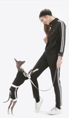 애견과 커플룩 연출!! 트레이닝복 상,하의 세트 DASOM training Set - Person Human Poses Reference, Photo Reference, Human Drawing, Drawing Poses, Dog Pants, Fashion Vocabulary, Cool Poses, Dynamic Poses, Standing Poses