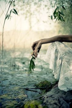 Soul, to me, means embodied essence. Healing comes through embodiment of the soul. ~Jungian analyst Marion Woodman