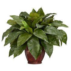 Nearly Natural Birdsnest Fern with Decorative Vase Silk Plant (Silk Flower), Green (Wood)