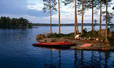 Canoeing at Lake Stora Gla, south of Arvika, Varmland, Sweden
