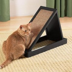 Pet furniture that looks good to you and your cats. Tap the link for an awesome selection cat and kitten products for your feline companion! Bow Chicka Meow Meow - Tap the link now to see all of our cool cat collections! Diy Cat Tent, Cat Activity, Cat Scratcher, Cat Room, Pet Furniture, Cat Accessories, Cat Sleeping, Cool Cats, Animals And Pets