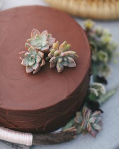 12 Chocolate Wedding Cakes That We're Sweet On: Desert Dessert. Chocolate cake topped with and surrounded by mini succulents.